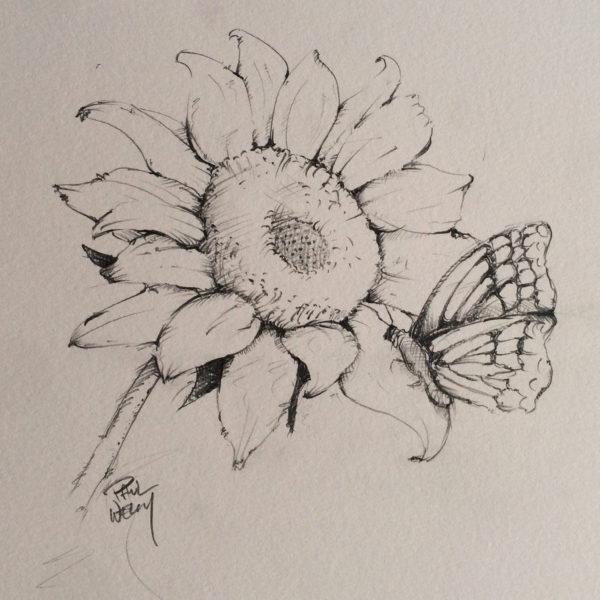sunflower_product_image
